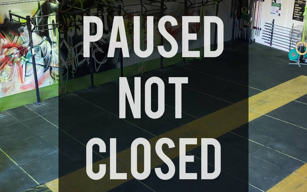 Fibre Active Paused Not Closed